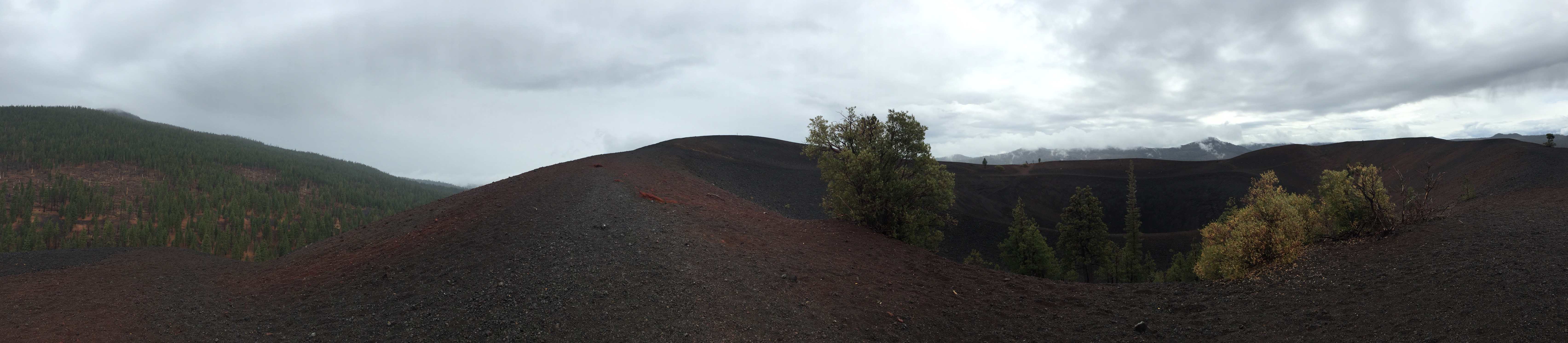 A panorama from the top of Cinder Cone